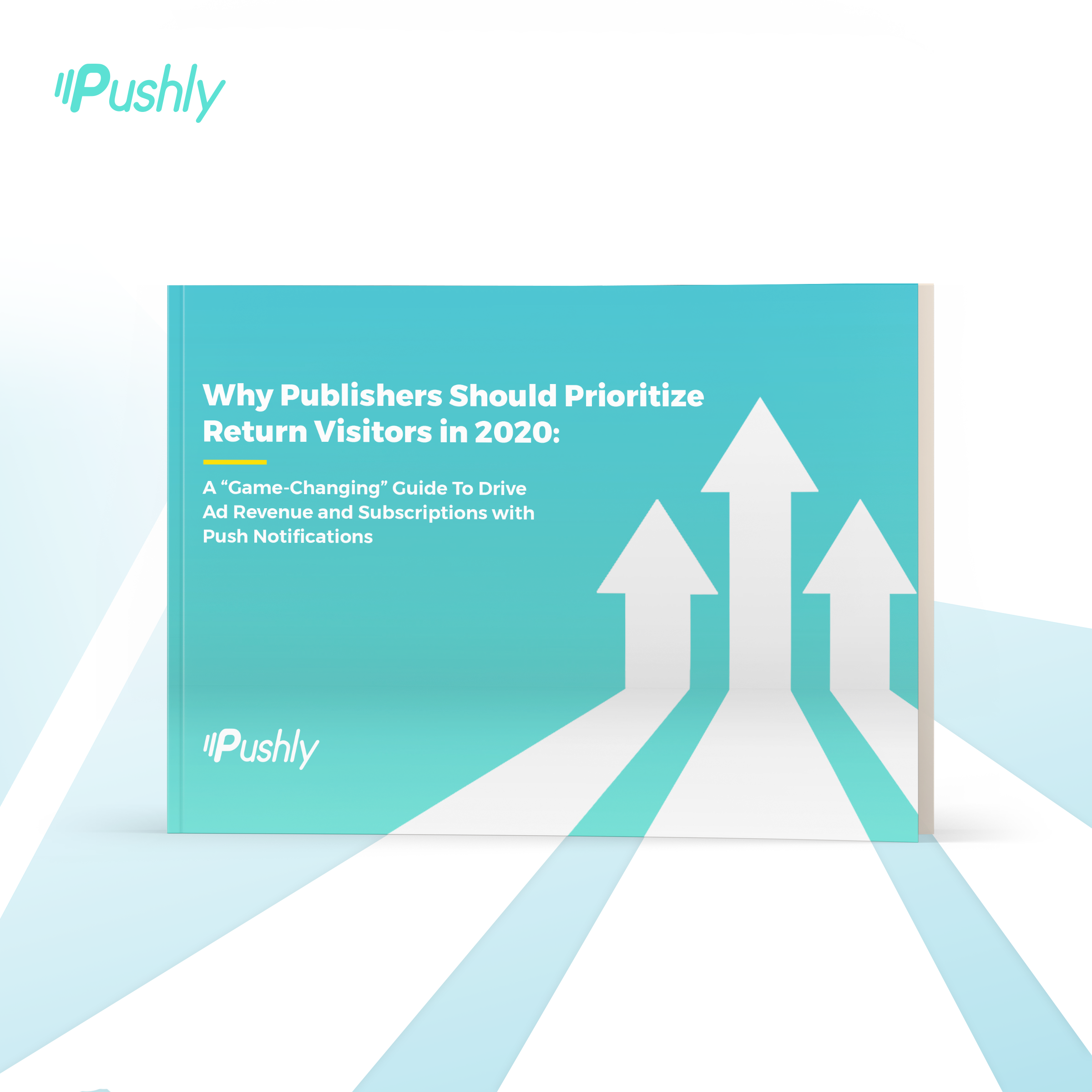 Pushly_Ebook_Ads_Jun2_product_1200x1200@2x